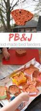 pb u0026j bird seed ornaments sugar spice and glitter