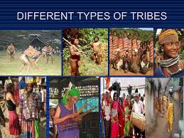 trible population and their health issues