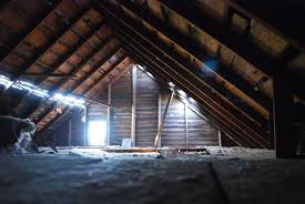 attic insulation in go green insulation team