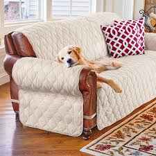 Furniture Protectors For Sofas by Ultimate Suede Furniture Protector Improvements Catalog