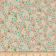 Amy Butler Home Decor Fabric by Meriwether Frolic Oatmeal Accent Colors Teal Blue And Fabrics