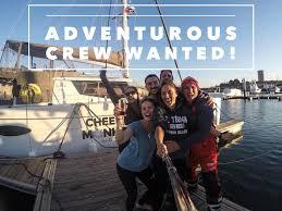 Is Seeking Cheeky Monkey Is Seeking Adventurous Crew Sailing The Seven Seas