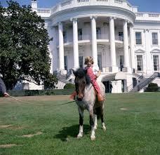 kn c20778 caroline kennedy with her pony macaroni john f