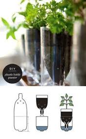 self watering recycled plant pot for growing herbs and flowers