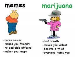 Le Meme - le new meme meme facts 4chanmeta