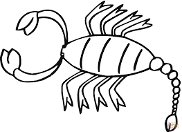 scorpion 16 coloring page free printable coloring pages