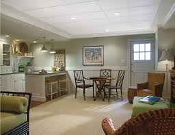Basement Ceiling Design Armstrong Design A Room Home Design