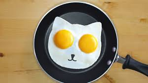 10 egg gadgets must have for egg lovers youtube