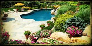 landscaping around pools with flower homefurniture org