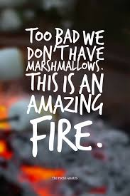education quote fire 16 marshmallow quotes with images quotes u0026 sayings