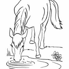 coloring sheets horses printable archives mente beta