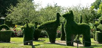 a look inside portsmouth u0027s green animals topiary garden