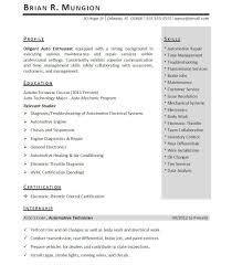 internship resume templates internship resume template free therpgmovie
