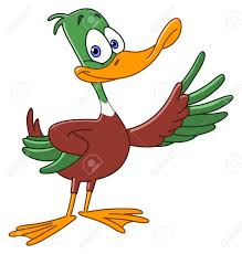 duck cartoon stock photos royalty free duck cartoon images and