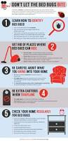 Dont Let The Bed Bugs Bite Infographic Don U0027t Let The Bed Bugs Bite Truly Nolen Canada