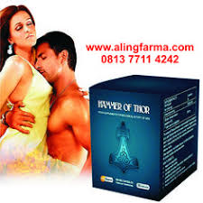 call 0822 4298 5999 hammer of thor obat hammer of thor agen hammer