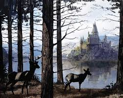 amazon com harry potter hogwarts hardcover ruled journal