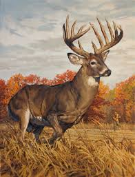 kirby original white tailed deer painting running and