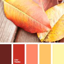 fall color pallette fall color matching color palette ideas