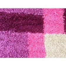 Purple Shag Area Rugs Pink And Purple Area Rug Stephanegalland