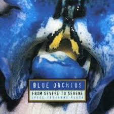 blue orchids the blue orchids biography albums links allmusic
