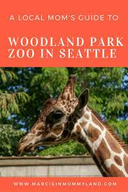 Zoo Lights Seattle by Best 20 Zoo Seattle Ideas On Pinterest Woodland Park Seattle