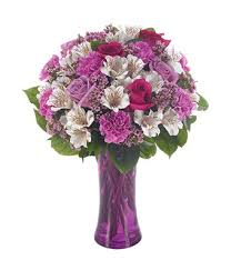 purple carnations blushing at from you flowers