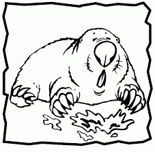 96 ideas mole coloring emergingartspdx