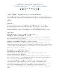 marketing resume objectives exles objective marketing resume madrat co shalomhouse us