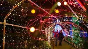 light show in atlanta how to get tickets to garden lights at the botanical garden