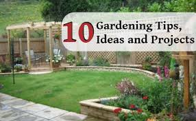Garden Tips And Ideas 10 Expert Gardening Tips Ideas And Projects Home So