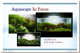 Aquascaping Techniques Aquascaping World Magazine Interview With Andre Cardoso