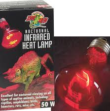 reptile terrarium lighting zoo med nocturnal infrared heat lamps