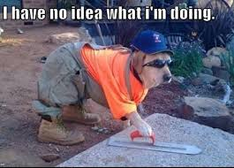 Builder Memes - i have no idea what i m doing dog builder i have no idea what