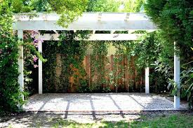 Landscaping Ideas For Backyard Privacy Backyard Privacy Ideas Wysiwyghome
