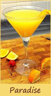 best 25 paradise cocktail ideas on pinterest mixed drinks with