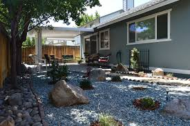 xeriscape ideas for your yard reno landscaping antonucci lawn