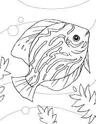 discus coloring page handipoints