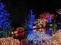 outdoor christmas lights for bushes net christmas lights for bushes christmas decor inspirations