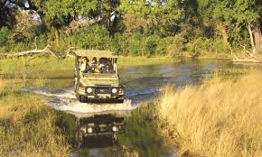 Six Flags Wild Safari Adventure Safaris Special Prices To Vist The Chobe National Park
