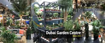 dubai garden centre shop in dubai uae best place to buy indoor