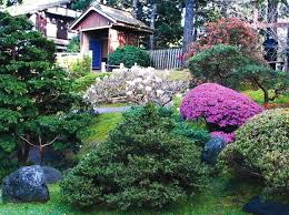 Backyard Trees Landscaping Ideas with Gardens With Magnolia Trees 25 Healing Backyard Ideas To Feng
