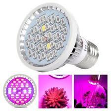 Flower Light Bulbs - flower light bulb ebay