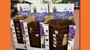 hcn news vegtrug wooden barrel planter by takasho youtube