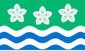 Flag Flower Flag Of Cumberland Wikipedia