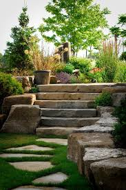 where to buy stepping stones for rustic landscape and ferns