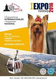 lexus amanda edad catalogo aercan exposicion enero 2016 by aercan issuu