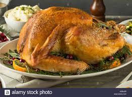organic free range thanksgiving turkey with sides stock