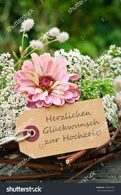 wedding wishes german pink roses card weddingcongratulations on your stock photo