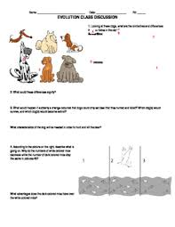 introduction to evolution worksheet by huynh ing tpt